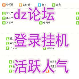 dz论坛多账号批量登录挂机软件